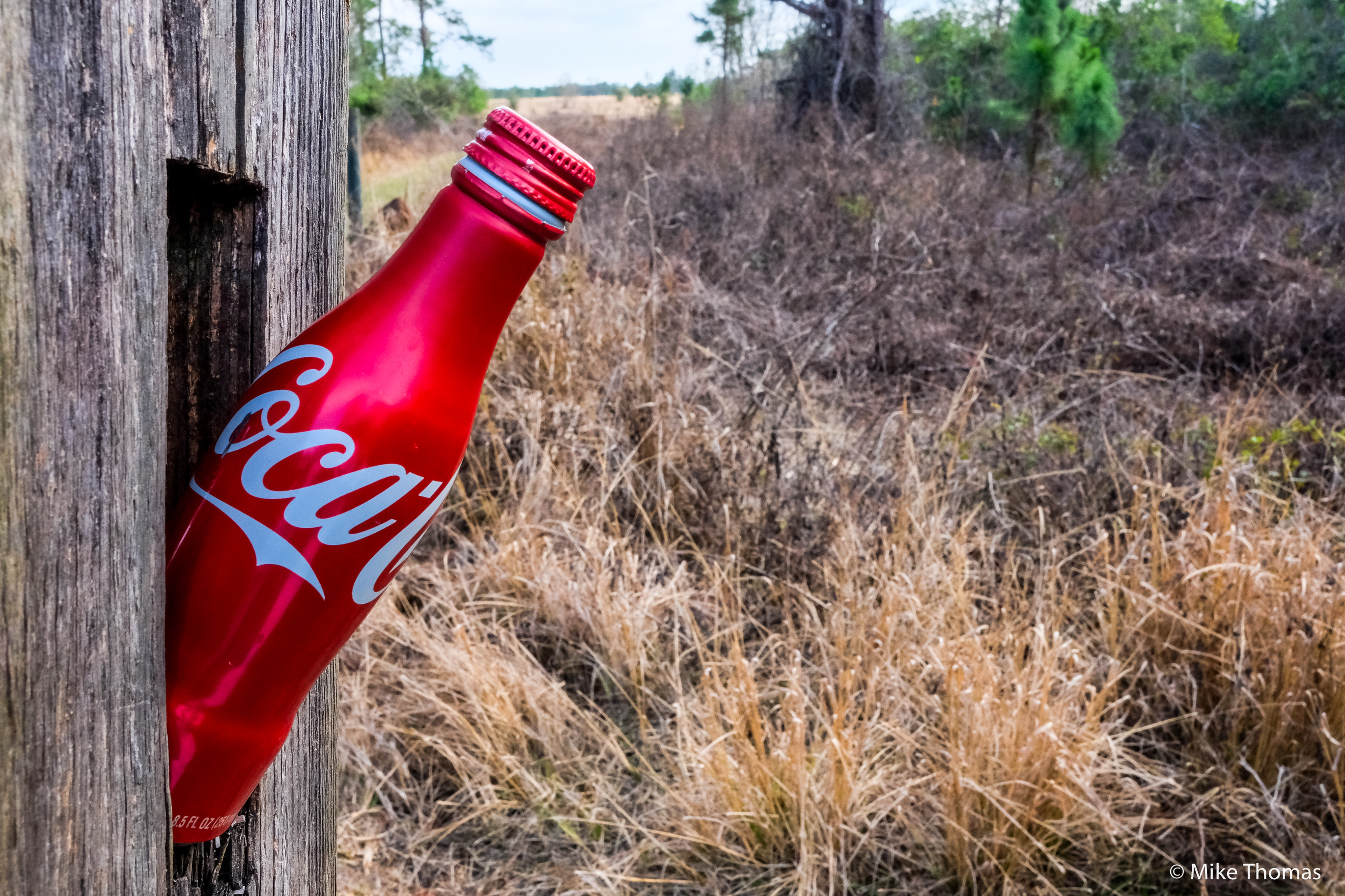 coke, cocal cola, soft drinks, things go better with coke, a smile and a coke, woods, forrest, nature