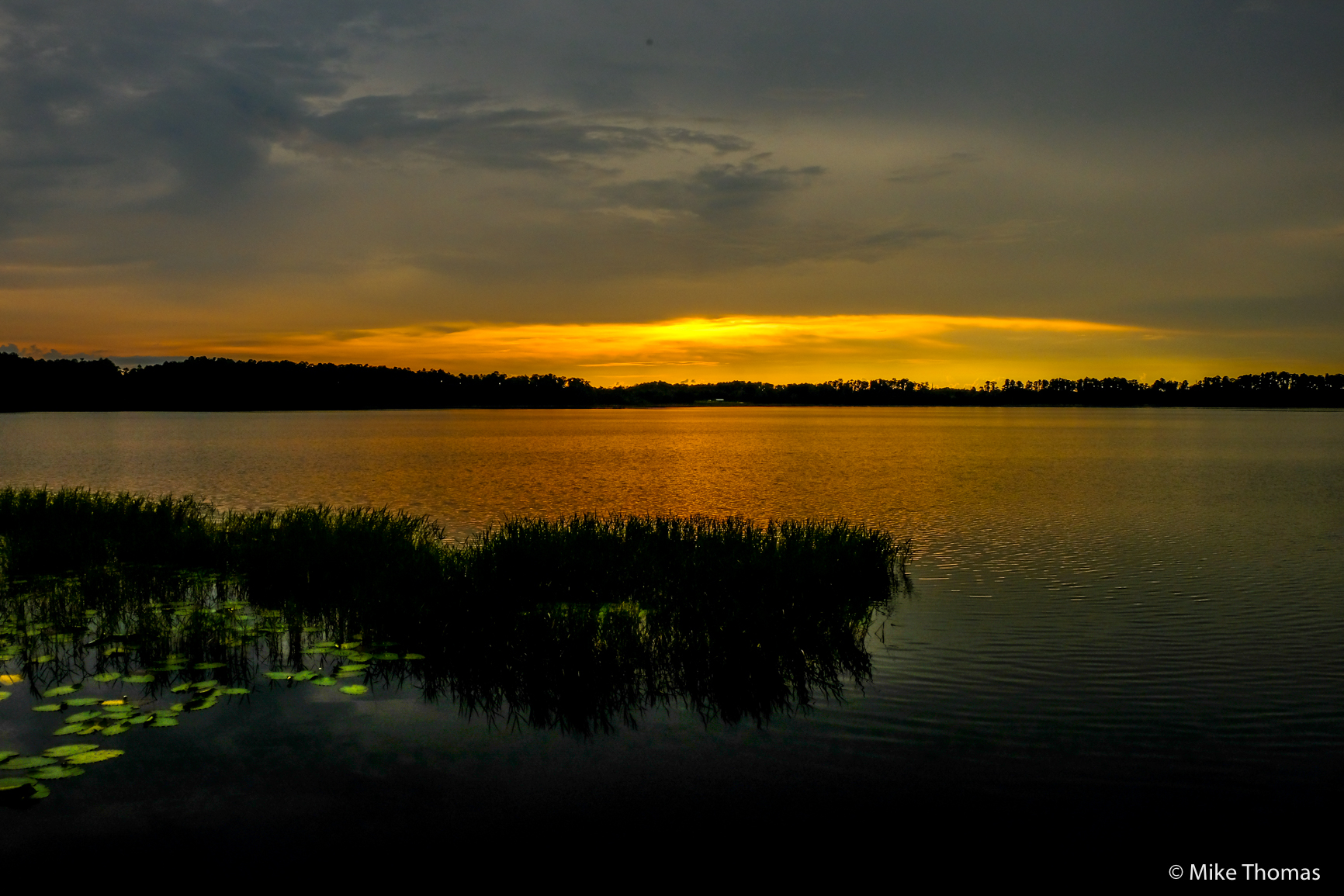 nature, sunset, florida, rain, thunderstorm, lake louisa state park, wildlife